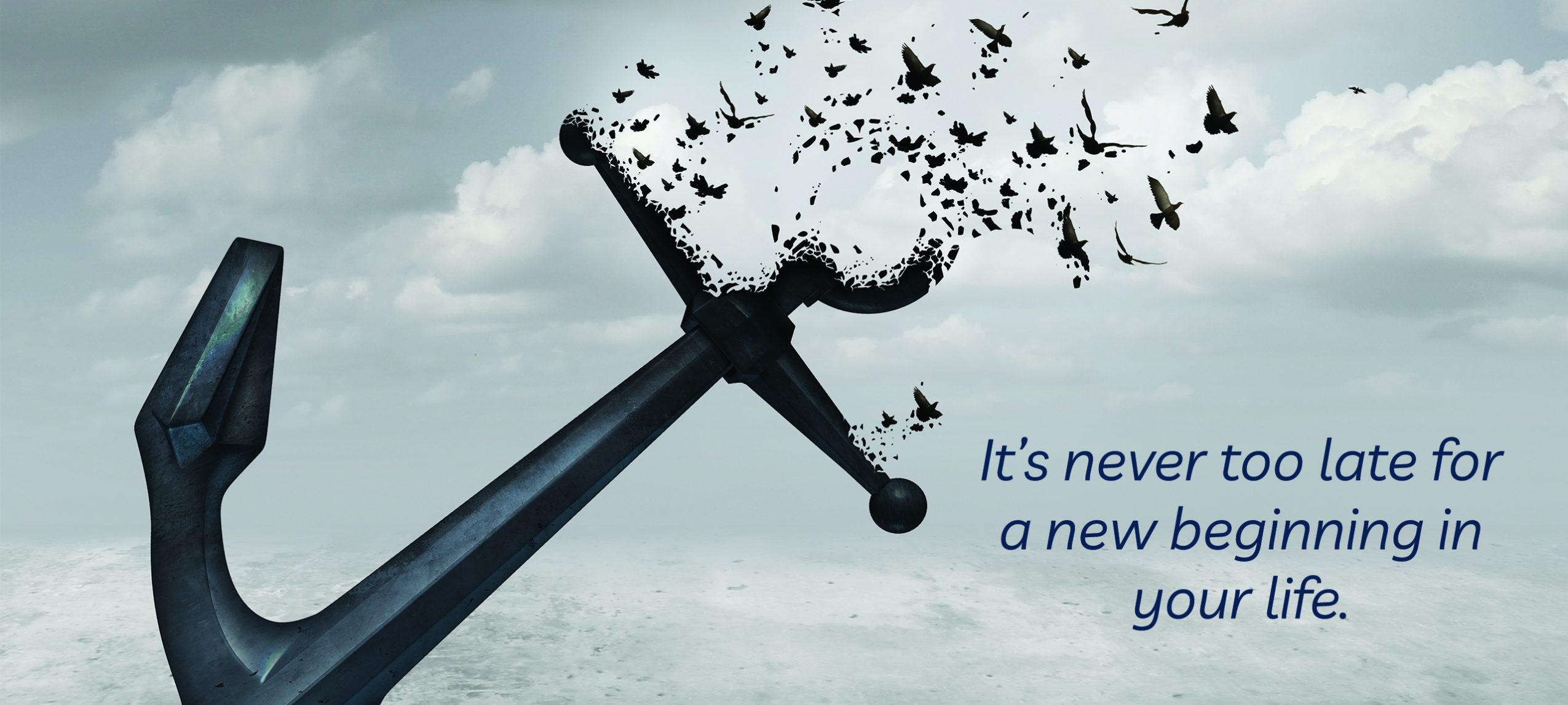 Are you ever too old to start something new? Anchor and birds